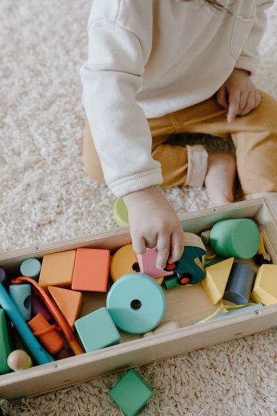 Montessori žaislai